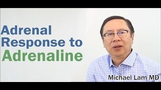 The Adrenal Response and Adrenal Fatigue