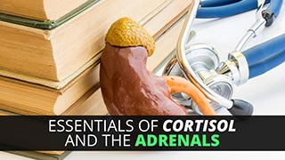 Essentials of Cortisol and the Adrenals